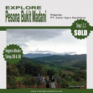 perkebunan durian pesona bukit madani puncak dua